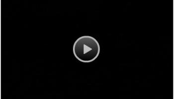 Prime TV Live – Worldwide TV Channels Live